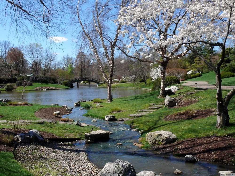 Картинка весна 2013 5